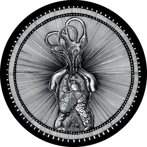 artworks-000183326906-gg4lym-t500x500