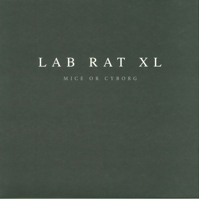lab rat xl
