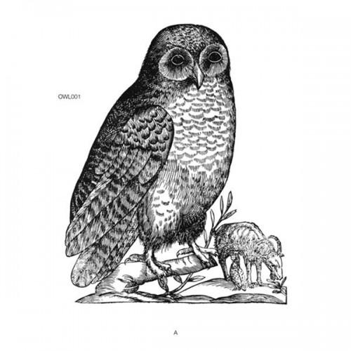 OWL001RP